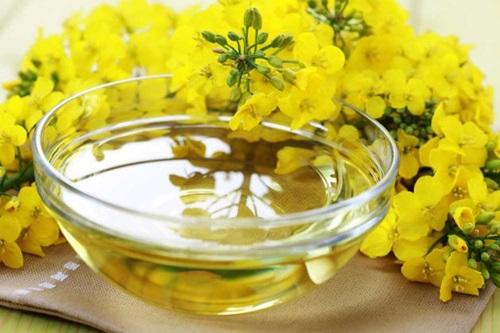 oleos-comestíveis-oleo-de-canola