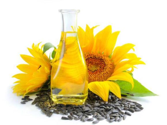 oleos-comestíveis-oleo-de-girassol-beneficios-e-propriedades