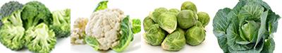 perder-peso-Vegetais-crucíferos