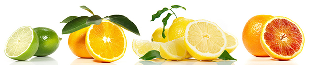 salmão-com-limão-limão