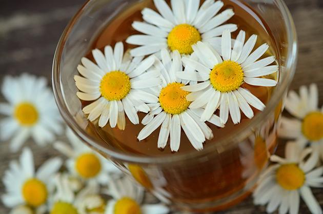 alimentos-que-melhoram-a-disposição-chamomile